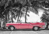 Palmbomen Oldtimer Fotobehang 13337P8_