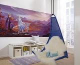 Frozen Panorama 8-4104_