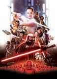 Star Wars Movie Poster Rey 4-4113_