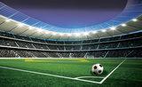 Voetbal Fotobehang 1914P8_