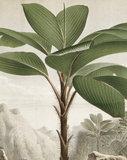 KEK Panel Banana Tree PA-010 (Met Gratis Lijm)_