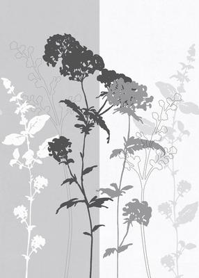 BehangExpresse Light and Dark INK7361 (Met Gratis Lijm)