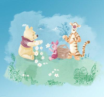 Winnie Pooh Picnic DX6-033