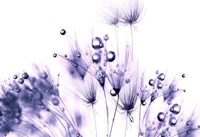 Bloemen & Planten Fotobehang 124P8