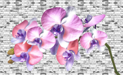 Bloemen & Planten Fotobehang 1604P8