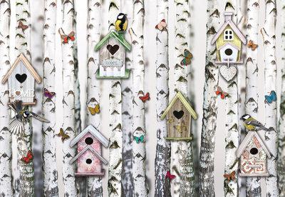 Fotobehang Berkenbos Vogelhuisjes 10950P8