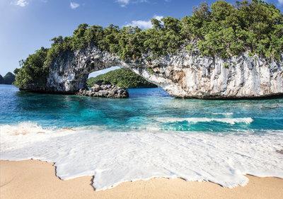Strand Tropisch Fotobehang 11236P8