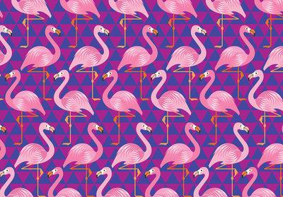 Flamingo Fotobehang 11141P8