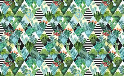 Cactus Geometrisch Fotobehang 11091P8