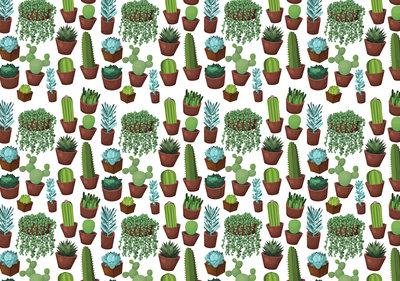 Cactus Geometrisch Fotobehang 11071P8