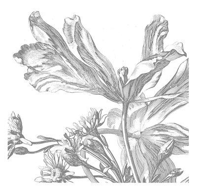 KEK Amsterdam Engraved Flowers III WP.333 (Met Gratis Lijm)
