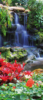 Waterfall in Colourful Jungle Deurposter Fotobehang 166VET