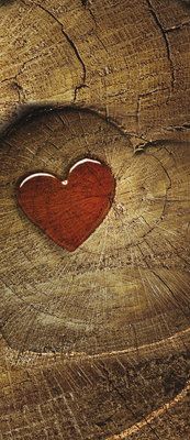 Red Heart on Wood Deurposter Fotobehang 135VET