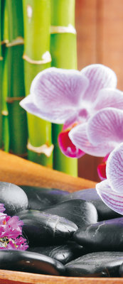Orchid Flower Floral Deurposter Fotobehang 115VET