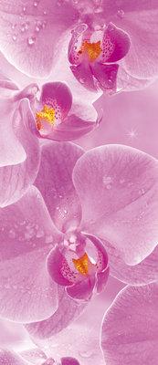 Flowers Flower Floral Deurposter Fotobehang 149VET