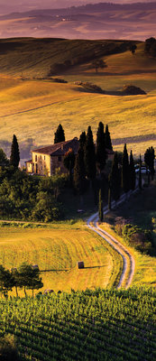 Tuscany Deurposter Fotobehang 169VET