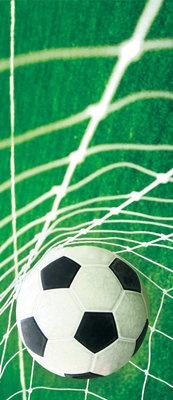 Ball in Goal Deurposter Fotobehang 015VET