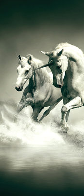 Unicorns Galloping on Water Deurposter Fotobehang 430VET