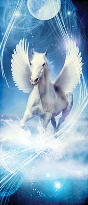 Pegasus on Blue Background Deurposter Fotobehang 588VET