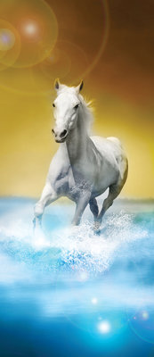 White Horses Galloping on Water Deurposter Fotobehang 425VET