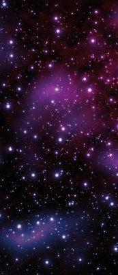 Cosmos Deurposter Fotobehang 177VET