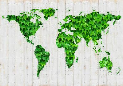Wereldkaart Groen Fotobehang 12594P8