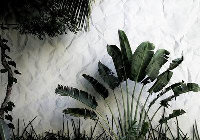 Botanisch Fotobehang 12595P8