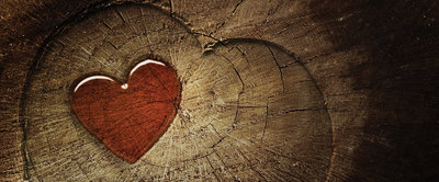 Red Heart on Wood Panorama Fotobehang 135VEP