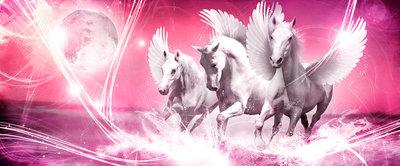 Pegasus on Pink Background Panorama Fotobehang 589VEP