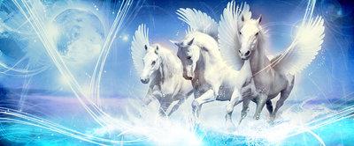 Pegasus on Blue Background Panorama Fotobehang 588VEP