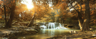 Waterfall in the Autumn Forest Panorama Fotobehang 10470VEP