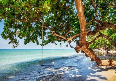 Strand Tropisch Fotobehang 11850P8