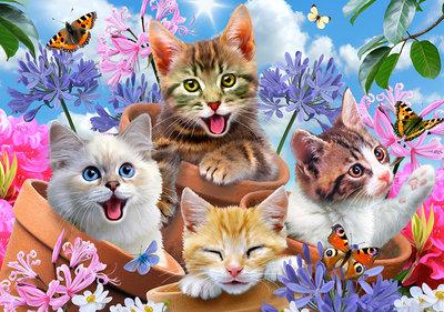Katten Selfie Fotobehang 12876P8