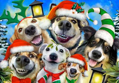 Honden Selfie Fotobehang 12869P8