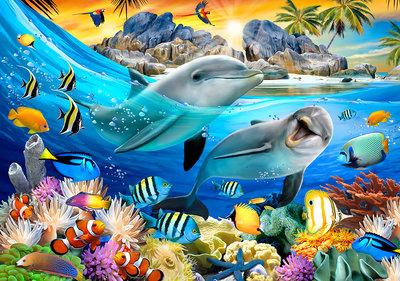Dolfijnen Selfie Fotobehang 12850P8