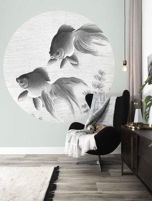 KEK Circle Goldfish CK-005 (Met Gratis Lijm)