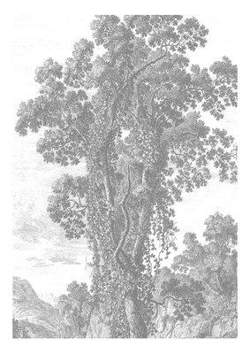 KEK Amsterdam Engraved Landscape II WP.313 (Met Gratis Lijm)