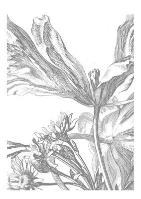 KEK Amsterdam Engraved Flowers III WP.329 (Met Gratis Lijm)