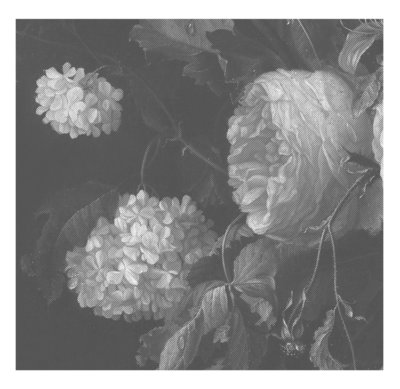 KEK Amsterdam Big Black & White Flowers II WP.343 (Met Gratis Lijm)
