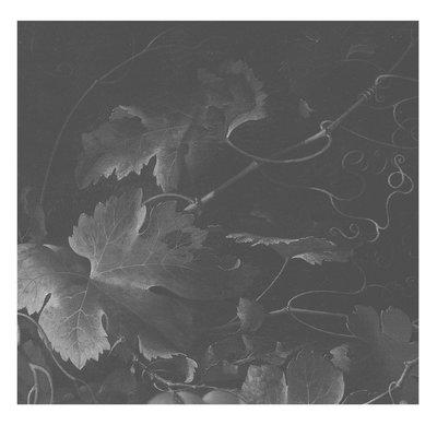 KEK Amsterdam Big Black & White Flowers III WP.344 (Met Gratis Lijm)