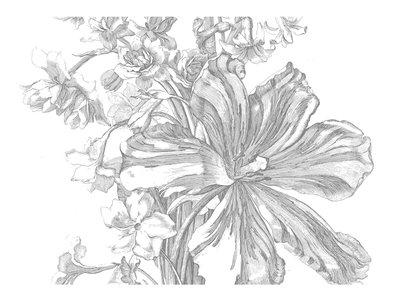 KEK Amsterdam Engraved Flowers II WP.336 (Met Gratis Lijm)