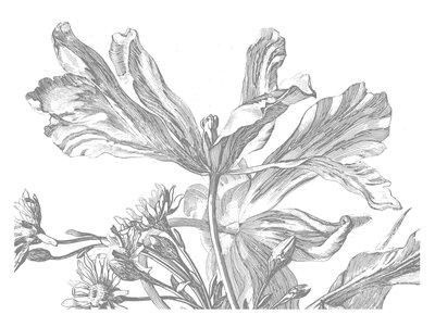 KEK Amsterdam Engraved Flowers III WP.337 (Met Gratis Lijm)