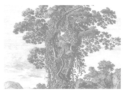 KEK Amsterdam Engraved Landscape II WP.323 (Met Gratis Lijm)