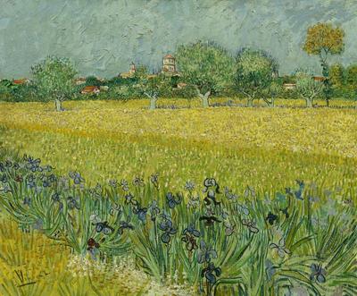 BN Wallcoverings Van Gogh / No Limits 30543 Veld met irissen