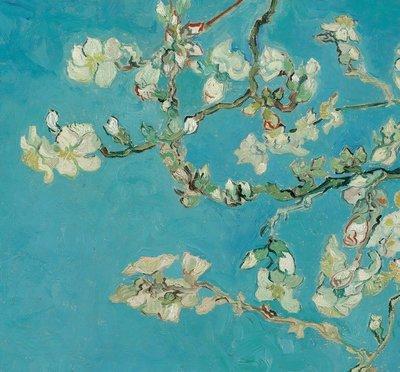 BN Van Gogh Museum 200331 (Met Gratis Lijm)