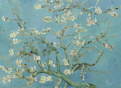 BN Van Gogh Museum 200330 (Met Gratis Lijm)