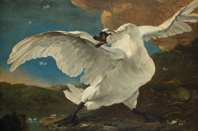 Rijksmuseum De Bedreigde Zwaan Jan Asselijn RM13 (Met Gratis Lijm)