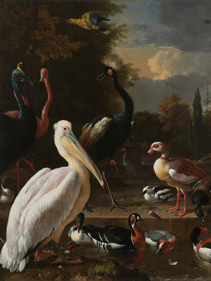 Rijksmuseum Het Drijvend Veertje Melchior D'Hondecoeter RM14 (Met Gratis Lijm)