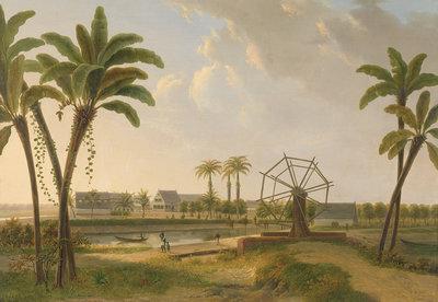 Rijksmuseum Gezicht op de Koffieplantage Suriname Willem De Klerk RM29 (Met Gratis Lijm)