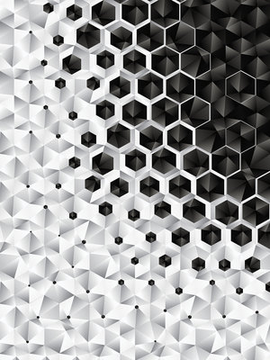 3D Hexagons  Fotobehang 10685VEA